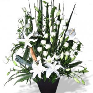Pie de Caja Fúnebre Elegante