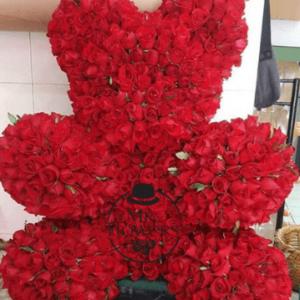Oso Con 550 rosas Rojas